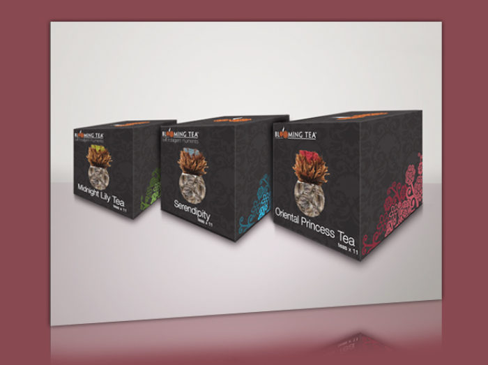 diseño de packaging en cancun
